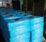 Lampes rurales d'éclairages LED de l'électricité solaire avec les lampes d'or de l'argent 1W 3W DEL