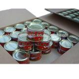 Alta qualità di certificazione di Halal con l'inserimento di pomodoro inscatolato prezzo poco costoso