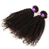 Extensões naturais do cabelo do cabelo Kinky, cabelo Curly Kinky Mongolian do Virgin