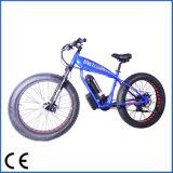 [48ف] [500و] قاطع متناوب إطار العجلة سمين درّاجة كهربائيّة, يقود على شاطئ وجبل ([أكم-1201])