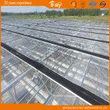 高く軽い伝送の長い寿命のガラス温室