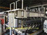 Heißer verkaufender hölzerner Plastikblatt-/Multiwall hohler Blatt-Produktionszweig