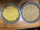 Кожа стерженя машины/пшеницы шелушения пшеницы извлекает машину шелушения отрубей машины/пшеницы