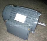 Motor eléctrico de la CA la monofásico del IEC Tefc