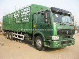 الصين [سنوتروك] إشارة [6إكس4] يقود [25تونس] شحن شاحنة