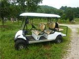 (4+2) carrello di golf elettrico della sede