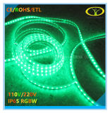 Bande de RoHS 5050SMD IP65 RGBW DEL de la CE avec à télécommande