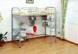 حارّة عمليّة بيع معدن ضعف [بونك بد] لأنّ أطفال غرفة نوم ([سف-23] [ر])