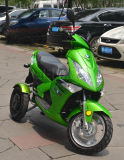 2000With1000W New 2013 Three Wheel Electric Motorcycle (GM690E)