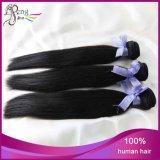 extensões malaias não processadas do cabelo de Stright do cabelo humano do Virgin 6A