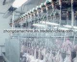 Taxa do depenador da máquina 99 do depenador da galinha (%)