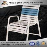 Хороший винил Furnir Wf-17033 связывает стул рукоятки бассеина