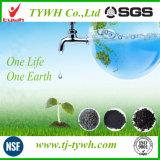 Betätigte Kohlenstoff-Aufnahme-Wasserbehandlung