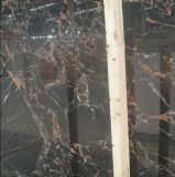 Manufacturer professionale di Marble Slabs/Tiles