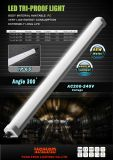 18W 36W 45W Plástico LED Tri Proof Light com Ce RoHS UL SAA