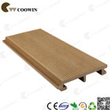 Raccordo di plastica di legno della parete di WPC (TH-10)