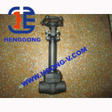 Válvula de porta soldada aço forjada da baixa temperatura de API/ANSI/DIN