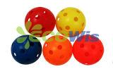 Usapa는 시험했다 Pickleball 공 (HTS5052)를