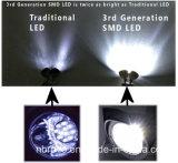 Solarfühler-Sicherheits-Licht der bewegungs-22LED (RS2009B)