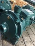 Bomba de água centrífuga elétrica Scm2-60 (1.5kw/2HP), dois impulsores de bronze (dobro)