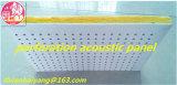 Écrans antibruits de plafond avec le panneau de détective de panneau de mur de panneau de plafond de prix usine
