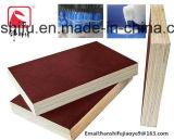 Pegamento de madera estupendo de la laminación de la chapa
