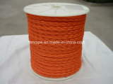 Hohles Braid Polypropylene Rope (Ski Seil)
