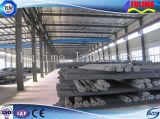 長いスパンの鋼鉄Strucureの倉庫(FLM-016)