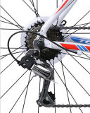 Сплав верхнего качества участвуя в гонке велосипед