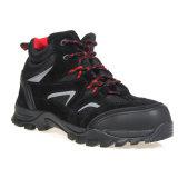 Chaussure de sûreté légère de sport de tep composée élevée de coupure