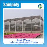 La serre chaude de polycarbonate la meilleur marché pour agricole