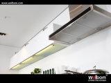 A cozinha modular de Welbom projeta o gabinete de cozinha da laca para a cozinha pequena