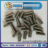 Fabrik Direct Sales von Molybdenum Threaded Stud und von Nuts