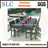 Напольная Wicker мебель/wicker мебель/мебель обедать установили (SC-B6023)
