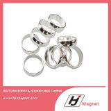 Super starker kundenspezifischer seltene Masse flacher NdFeB Magnet des Ring-N35 für Motoren