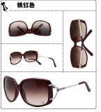 De Zonnebril van de manier (7304 6-1)
