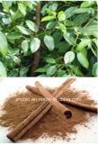 Полифенол 10% выдержки циннамона высокого качества, флавоны 5%, 20:1
