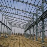 Entrepôt ou construction d'acier (ZY136)