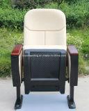 Plastikshell-Auditoriums-allgemeiner Lagerungs-Stuhl (1003A)