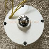 200W 12V/24V niedriger U/Min Generator Pmg