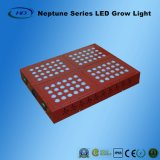 Neptune 4 LED는 녹색 집과 약을%s 가볍게 증가한다