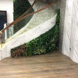 熱い販売の人工的な緑の壁の安い価格の人工的なプラント壁