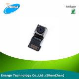 voor de AchterCamera van iPhone van de Appel 5s met Flex Kwaliteit van de Camera van de Kabel Achter Originele Nieuwe