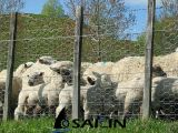 Плетение провода Sailin для загородки овец