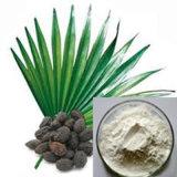 性質はノコギリパルメットP.Eのエキスが45%の脂肪酸を粉にするのを