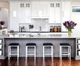 Gabinetes de cozinha do estilo do abanador