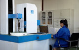 Acoplamento da engrenagem de Gsl-F com boas propriedades escorregadiços e de frição