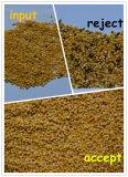 Hefeiの熱い販売の高容量の大豆カラー選別機