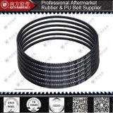 Raw borda dentada V-Belt / Dente Belt / V Belt / Correia de transmissão / Narrow V Belt