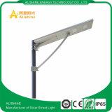 1개의 통합 LED 태양 LED 가로등에서 2017년 공장 가격 30W 40W 50W 60W OEM 모두